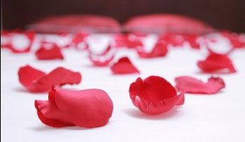 Ритуал «Лепестки роз»